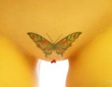 Bella chica con un tatuaje de mariposa en la pelvis (14)