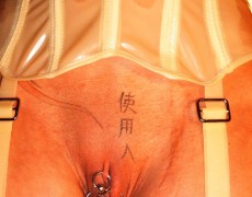 Tatuajes vaginales (156)