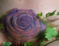 Tatuajes vaginales 2016 (131)