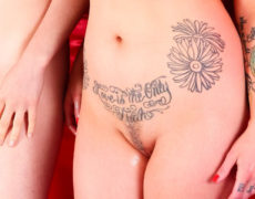 Tatuajes vaginales 2016 (15)